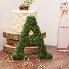 Real Moss Alphabet Letter