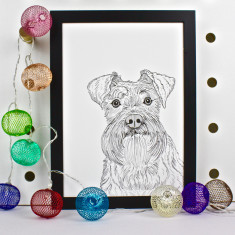 Schnauzer Dog Line Portrait Print
