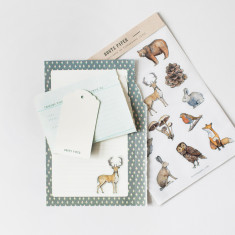 Woodland Sticker Set - Illustrated Transparent Stickers