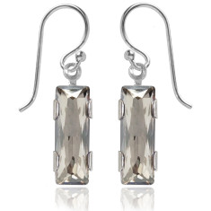 Swarovski crystal city earrings in silver shade