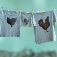 Cockerel Hen & chick t shirt trio set for dad mum and child