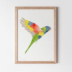 Rainbow Lorikeet Watercolour Fine Art Print