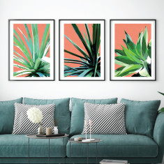 Terracotta Trio art prints (set of 3)