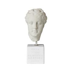 Greek Hygeia head statue
