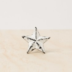 White star knob
