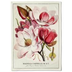Botanical Magnolias Tea Towel