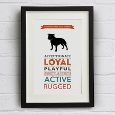 Staffordshire Bull Terrier Dog Breed Traits Print