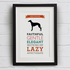 Greyhound Dog Breed Traits Print