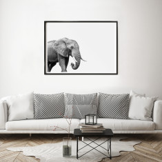 Elephant Limited Edition Fine Art Print