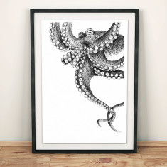 Illustrated octopus print
