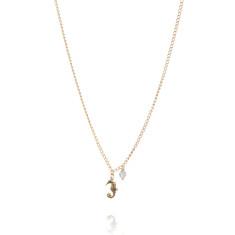 Amanda Coleman - Seahorse Necklace