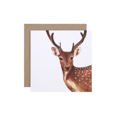 Christmas Reindeer Greeting Card (pack of 5)