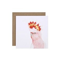 Major Mitchell Cockatoo Gift Card (pack of 5)