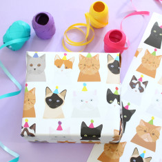 Party Cat Wrapping Paper x2 sheets