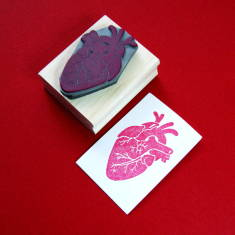 Anatomical heart rubber stamp