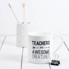Teachers are awesome creatures mug