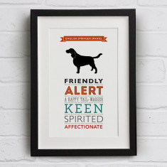 English Springer Spaniel Dog Breed Traits Print