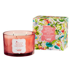 Apple & Peach Orchard Triple Wick Candle