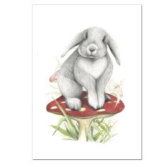 Flop Bunny - Lop Eared Rabbit Print Unframed