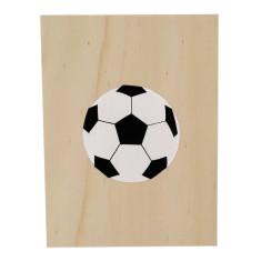 Soccer ply screenprint