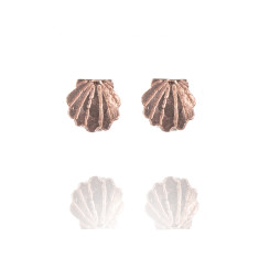 Amanda Coleman - Clamshell Stud Earrings