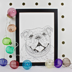 Bulldog Dog Line Portrait Print