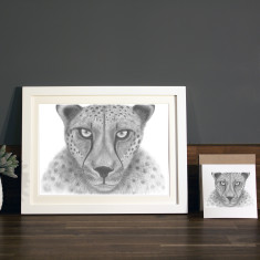 Cheetah illustration Print
