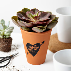Love Heart Arrows Plant Pot