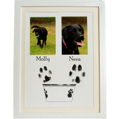 Framed dog & cat pet paw print kit