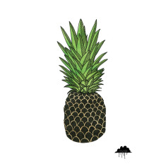 Pineapple Paul art print