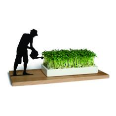 Smart 'n' green planter - Gardener