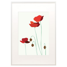 Anzac poppies print
