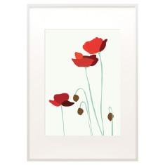 Anzac poppies print