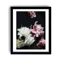 Peonies in Bloom II Photographic Print