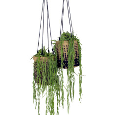 Hanging Pot Plant Holder - Coal