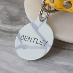 Fragmented Pet ID Tag