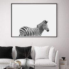 Zebra Limited Edition Fine Art Wall Print