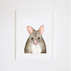 Possum Art Print