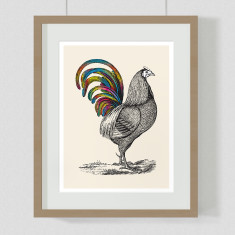 Rainbow rooster art print