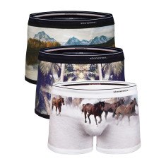 Men's boxer briefs (3 pack) in Horses, Shady Palms + Lake designs