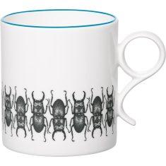 Beetles about mug