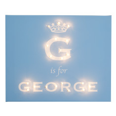 Royal darling prince illuminated canvas & nightlight