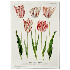 Botanical Tulips Tea Towel