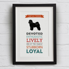 Tibetan Terrier Dog Breed Traits Print