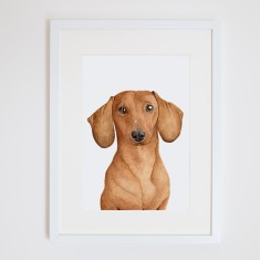 Duke the dachshund print