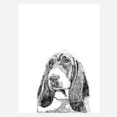 Bassett Hound Print