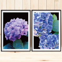 Nanna's garden art prints (set of 2)