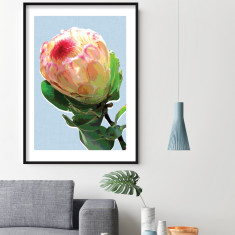 Protea blue art print (various sizes)