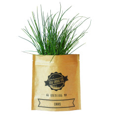 Chives herb in a bag