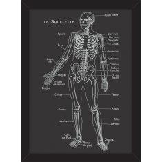 Le Squelette Print
